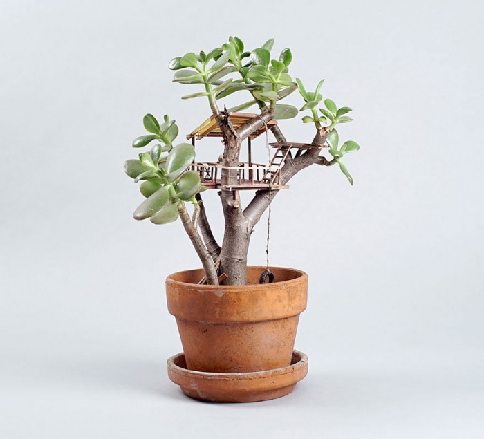 casitas-diminutas-en-las-plantas-jedediah-corwyn-3