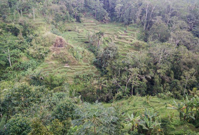 Vistas Bali Pulina