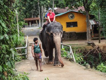 Paseando en elefante