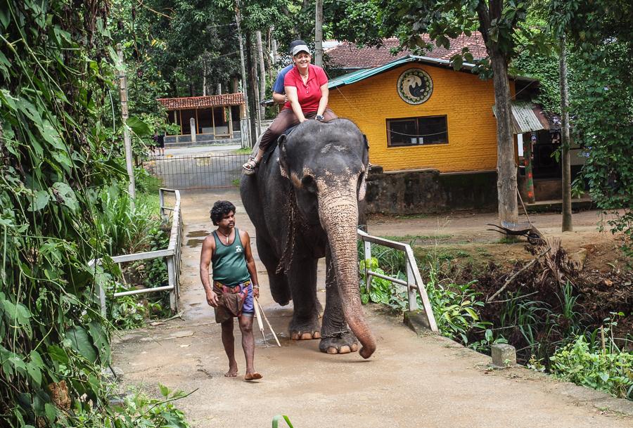 Paseando en elefante en Sri Lanka - ThinkinFreak.com